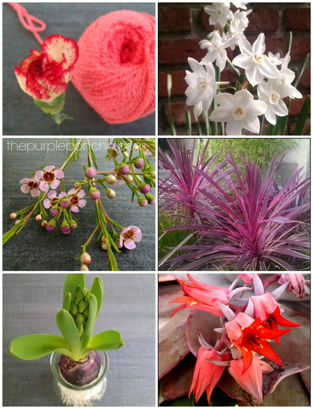 Flower Finds by thepurpleponcho.com -