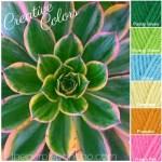 Creative Colors – Succulent Palette!