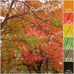 Creative Colors – Fall Trees Palette!