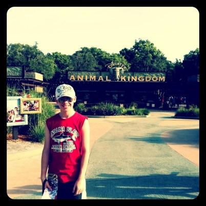 animal-kingdom-sign