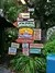 animal-kingdom-signs