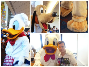 Meeting Donald Duck at Chef Mickeys