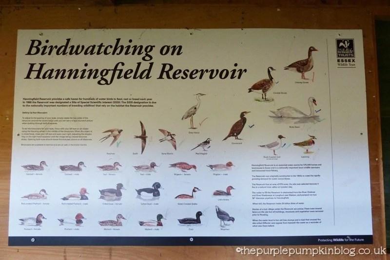 Hanningfield Reservoir Nature Trails (6)