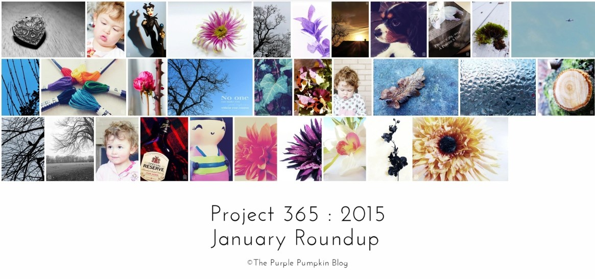 January Roundup Project 365 2015