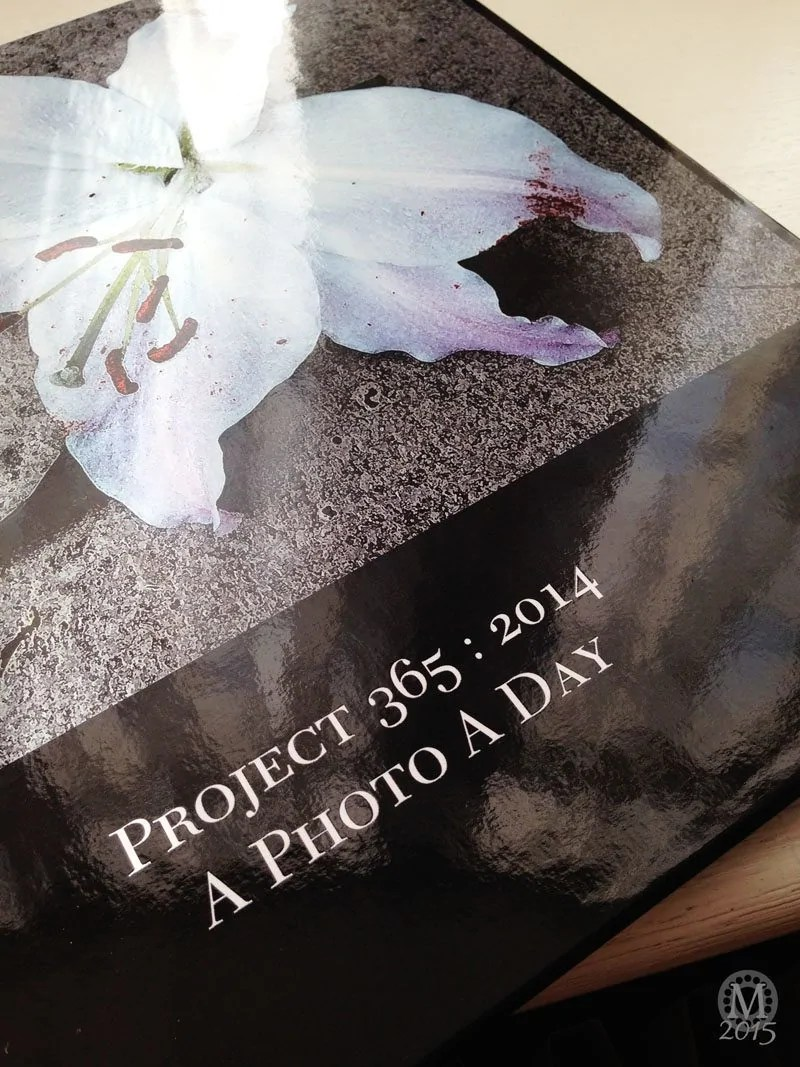 Project 365 2015 - Day 9