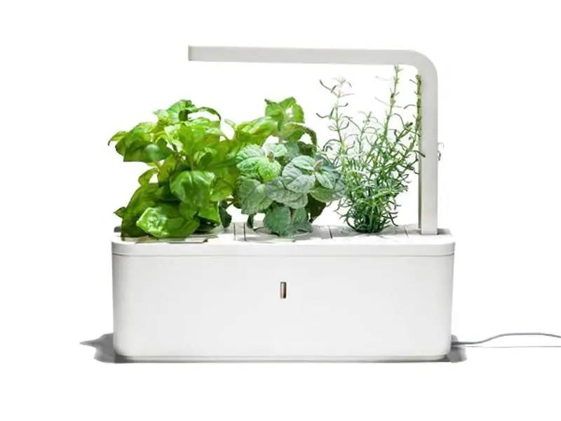 Click and Grow Herb Garden