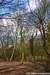 The Manor Nature Reserve - Harold Hill Essex