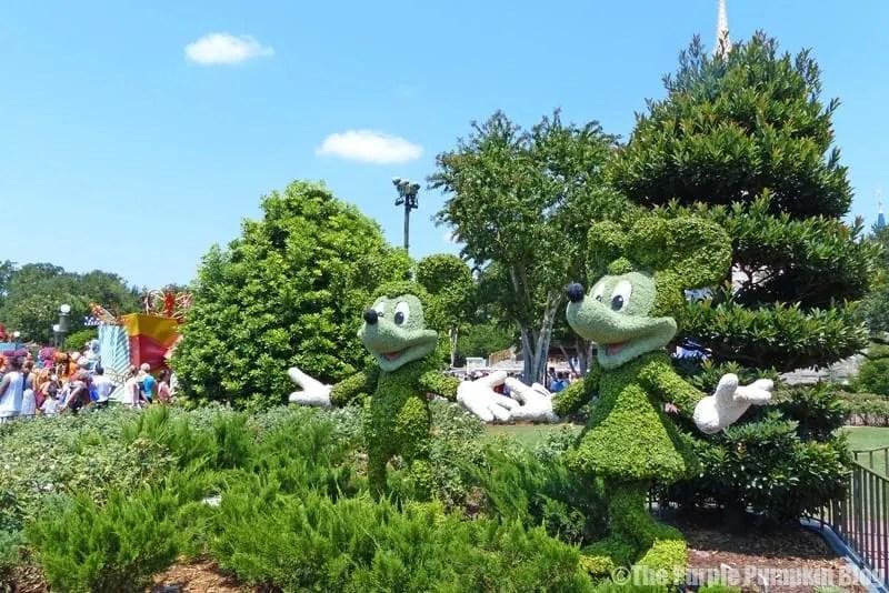 Mickey and Minnie Topiaries at Mgic Kingdom