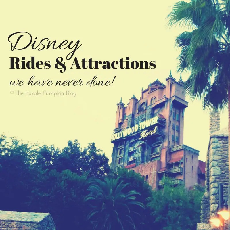 Disney Rides and Attractions We Have Never Done