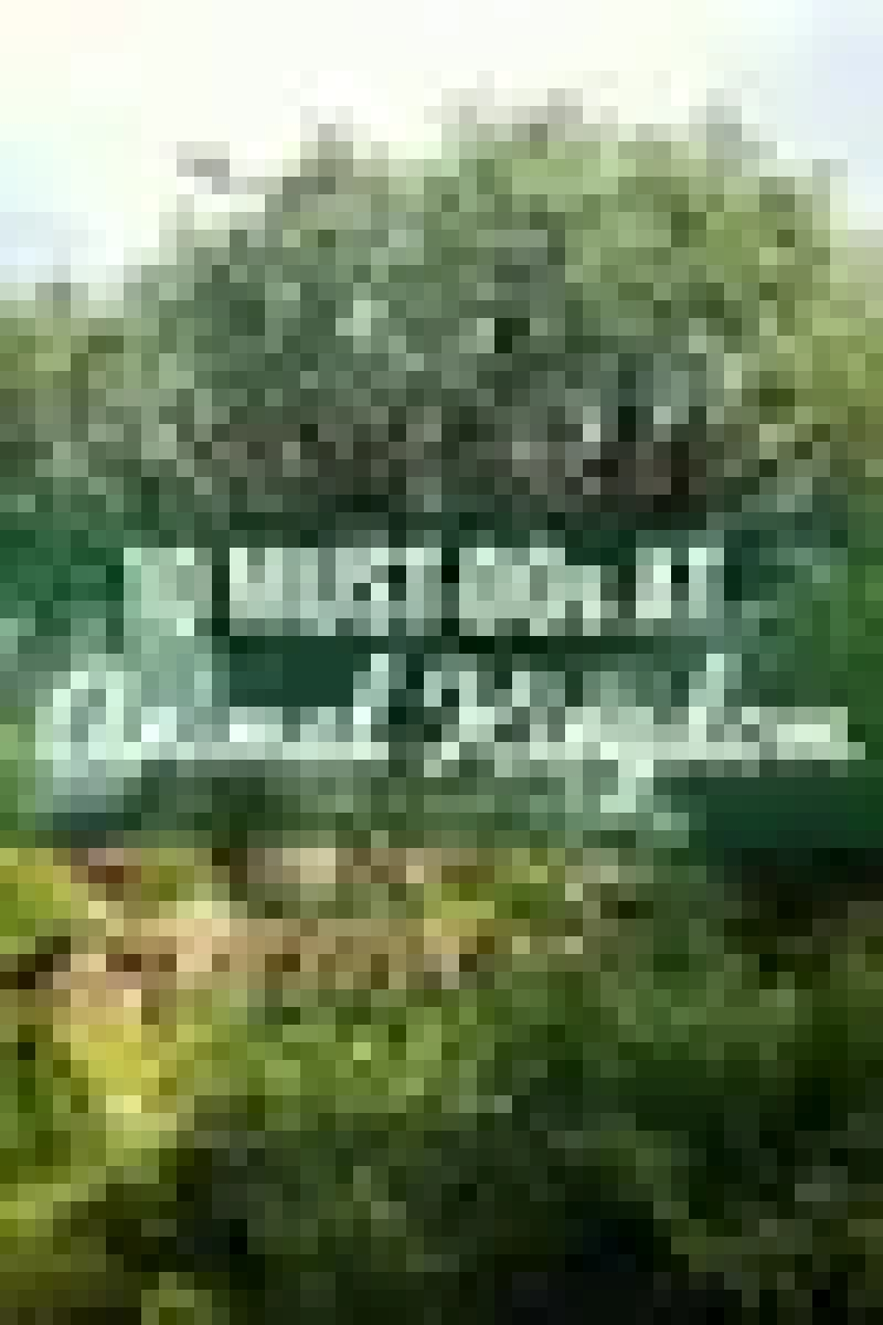 10 Must-Dos at Animal Kingdom