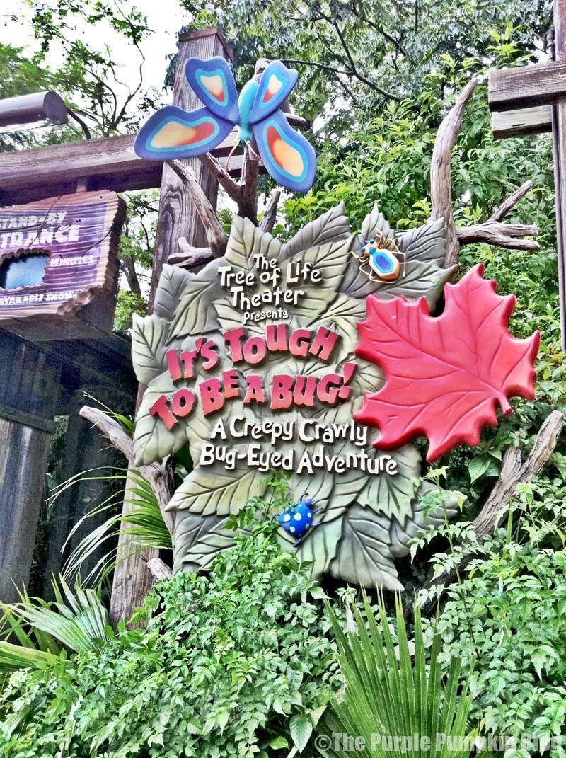 It's Tough To Be A Bug - Animal Kingdom