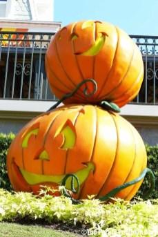 Pumpkins at Magic Kingdom
