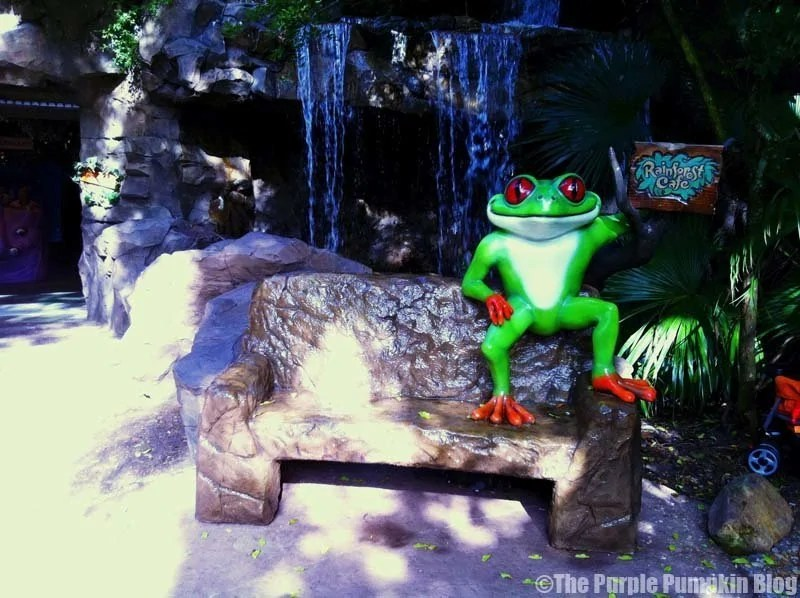 Rainforest Cafe - Animal Kingdom