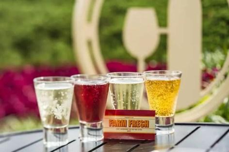 Epcot International Food + Wine Festival