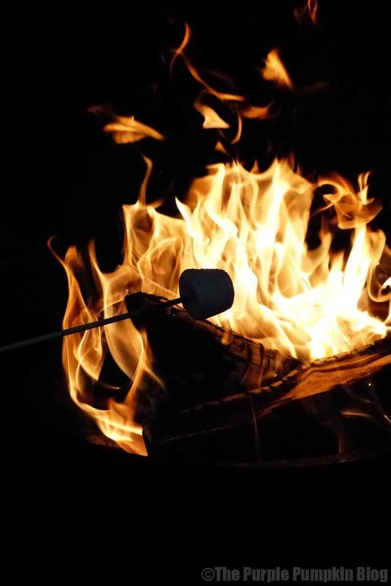 Reasons To Love Autumn - toasting marshmallows
