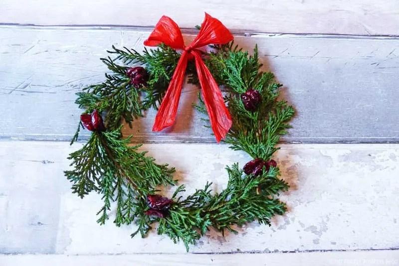 Fern & Dried Cranberry Wreath - Step 4a