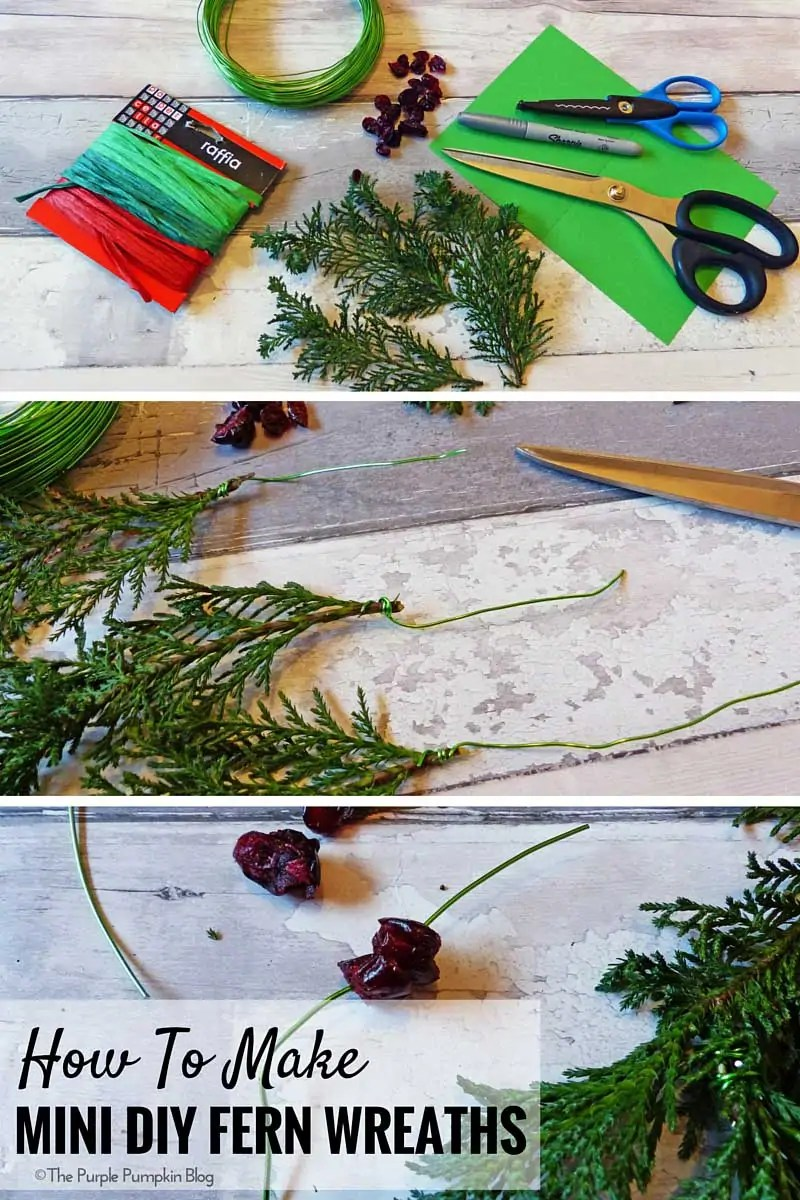 How To Make Mini DIY Fern Wreaths. You could use ferns, twigs or even herbs from the garden.