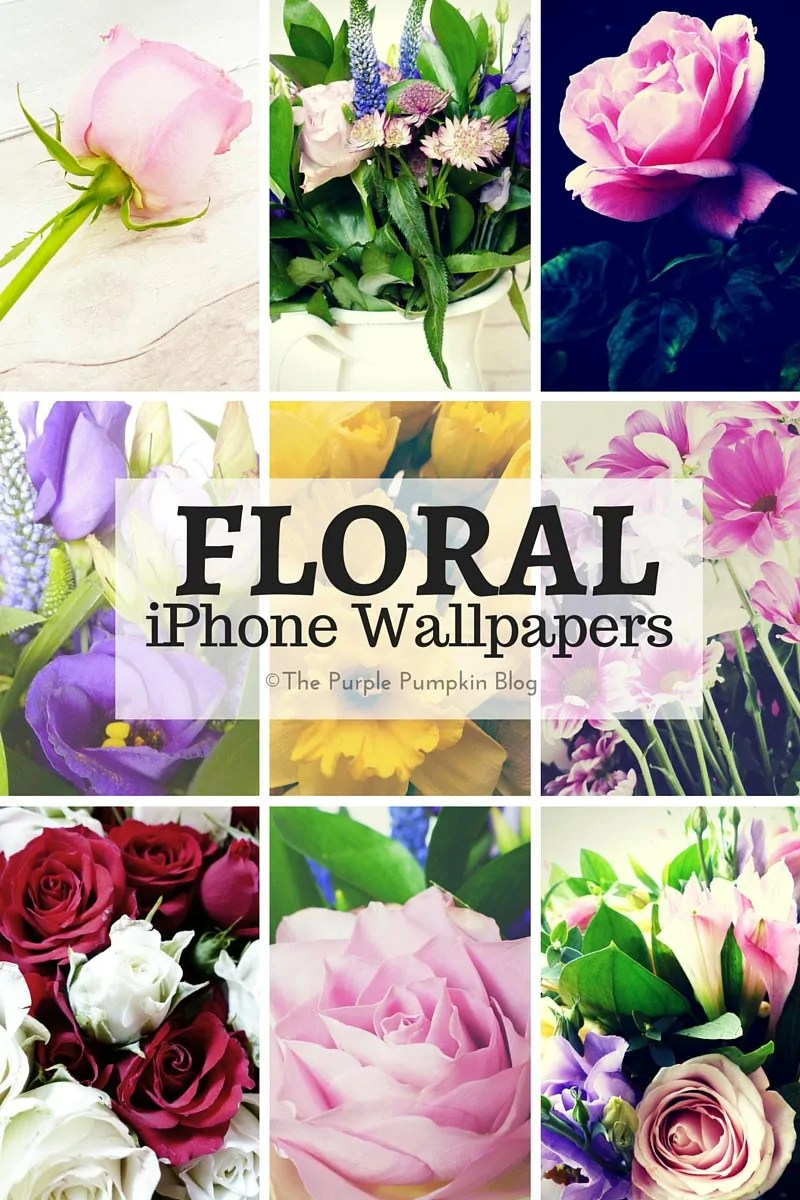 Floral iPhone Wallpapers - free to download, and great to use for Spring, Summer, Mother's Day, and Easter.