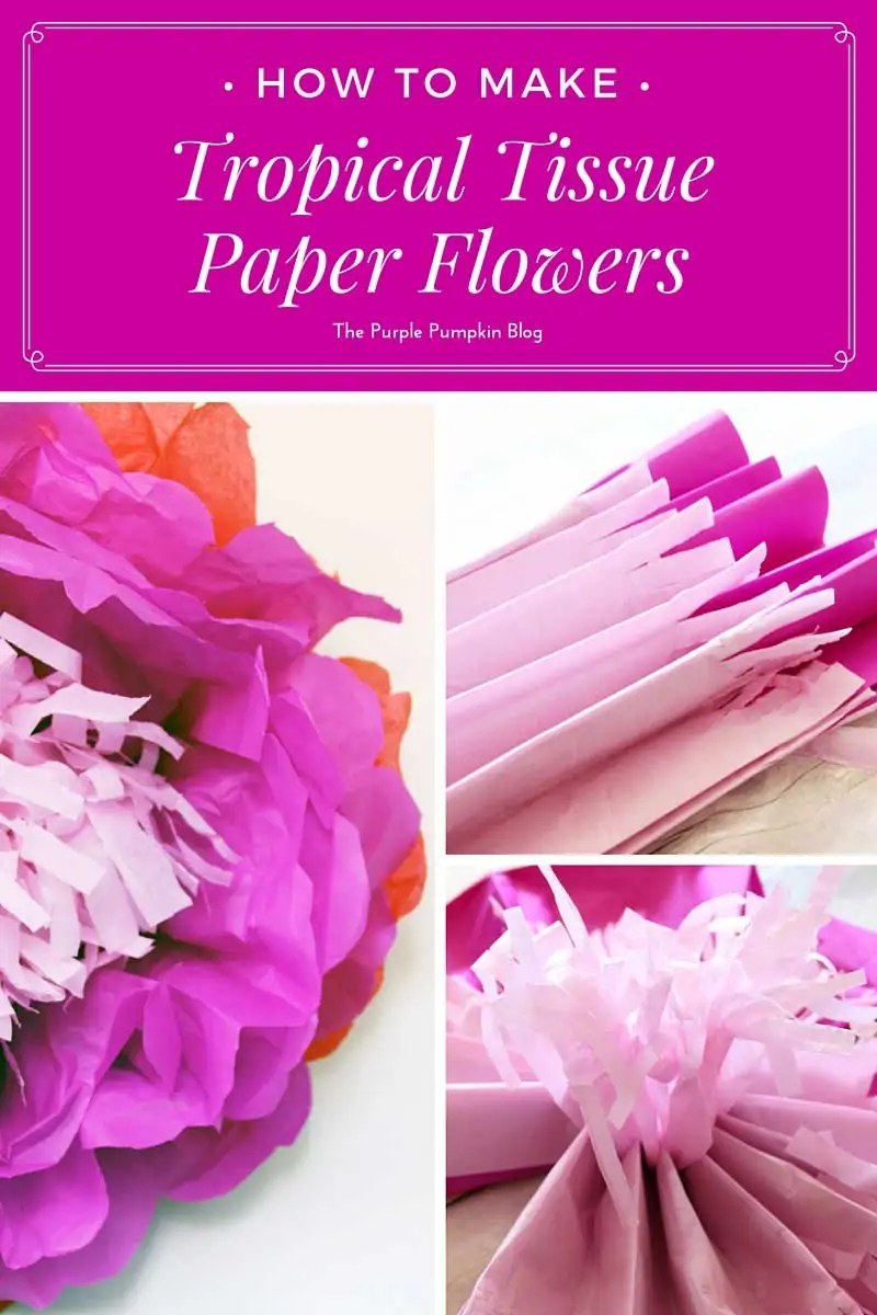 How to make tropical tissue paper flowers how to make tropical tissue paper flowersgresize8001200 mightylinksfo