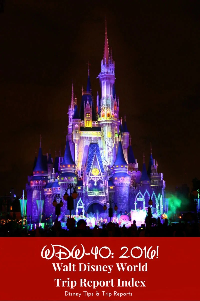WDW-40 2016 - Walt Disney World Trip Report Index