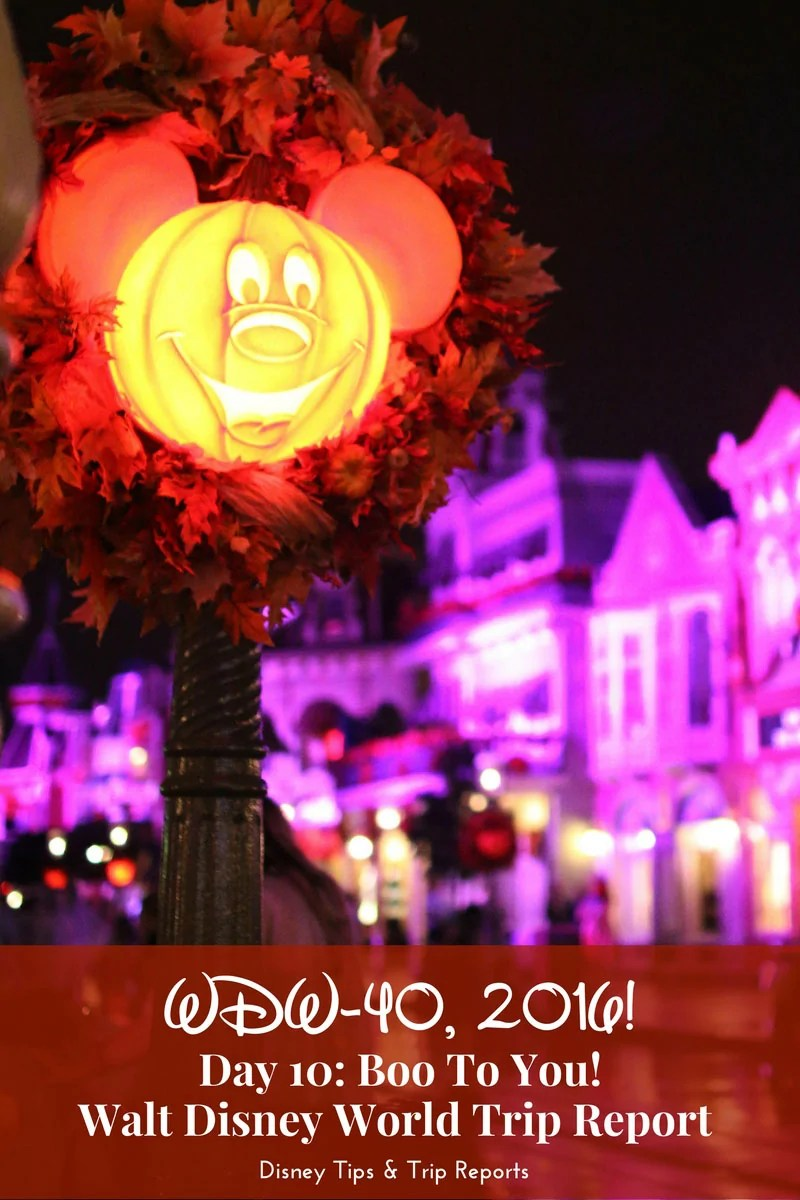 Day 10 - Boo To You! - WDW-40, 2016