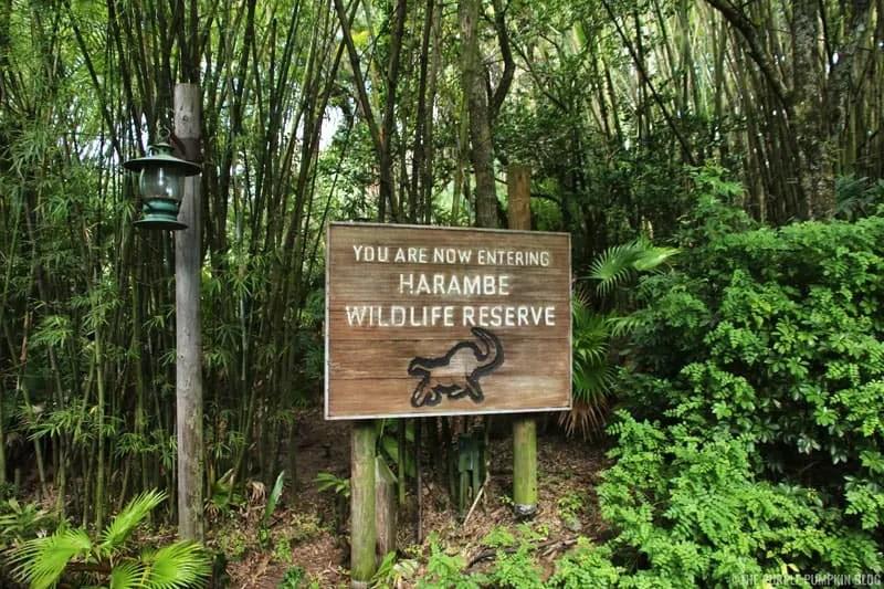 Kilimanjaro Safaris - Animal Kingdom