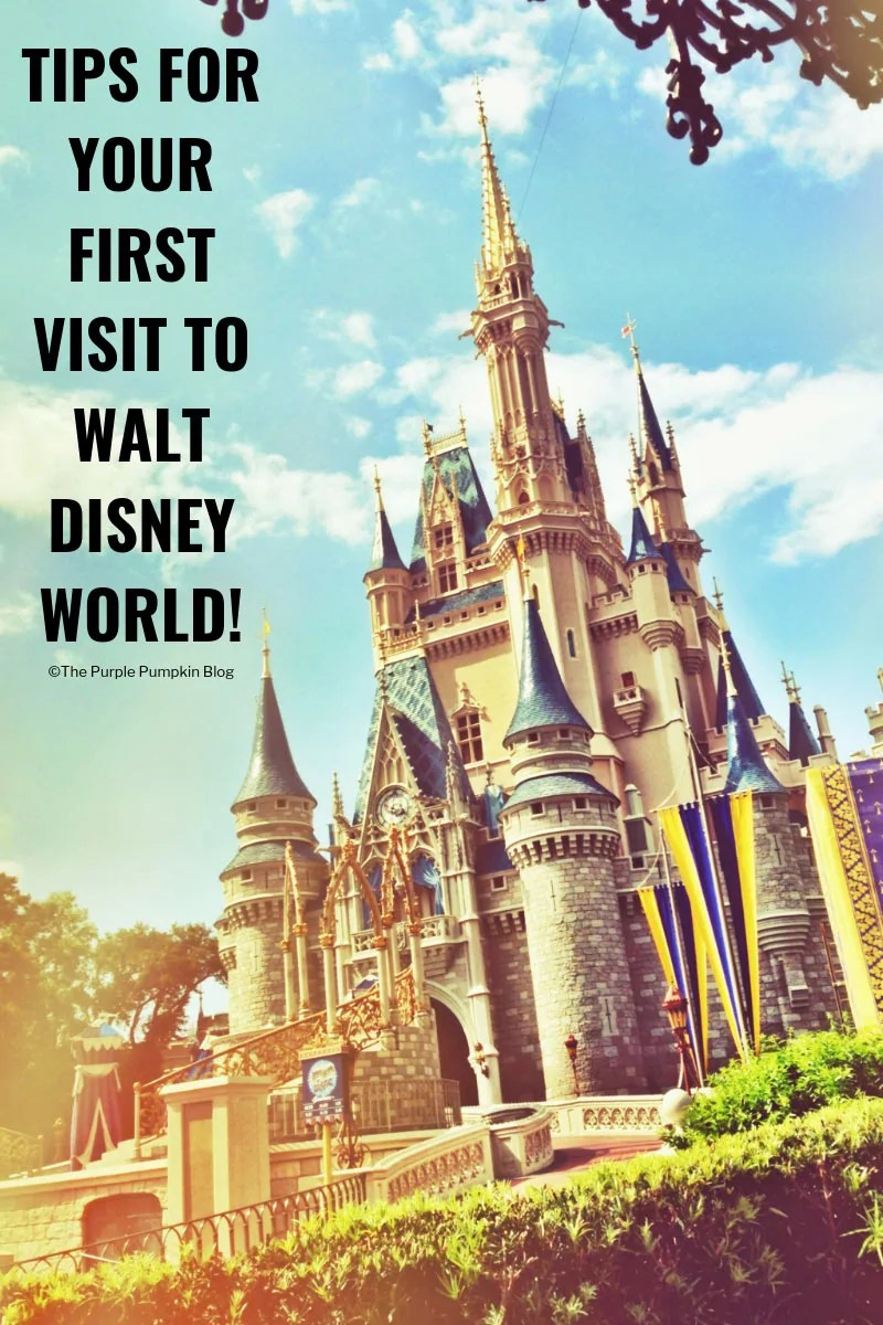 Tips for your first visit to Walt Disney World in Orlando Florida