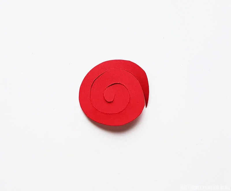 Red Circle Spiral Cut