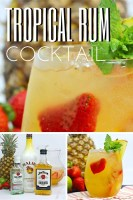 Tropical Rum Cocktail