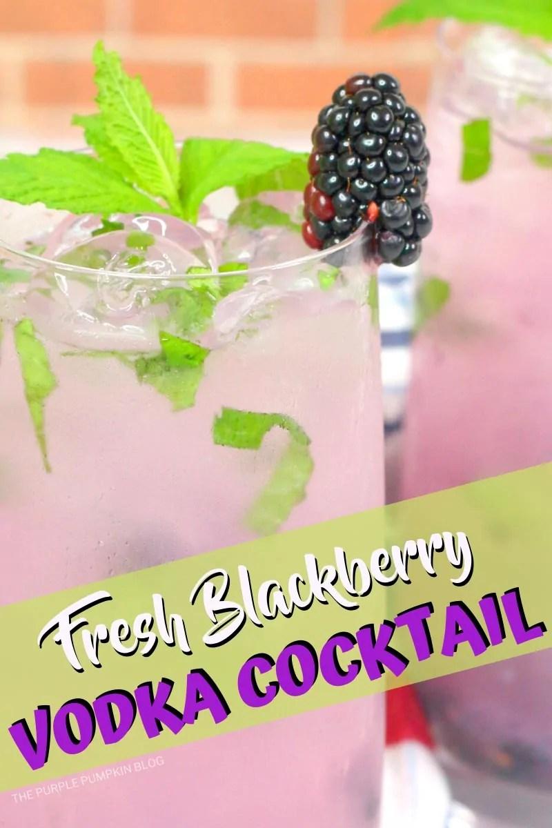 Fresh Blackberry Vodka Cocktail