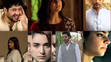 7 roles from pakistani dramas image