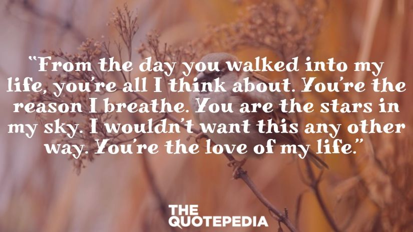 """""""From the day you walked into my life, you're all I think about. You're the reason I breathe. You are the stars in my sky. I wouldn't want this any other way. You're the love of my life."""""""