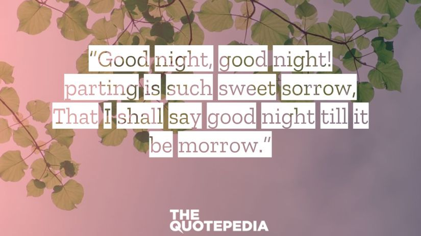 """""""Good night, good night! parting is such sweet sorrow, That I shall say good night till it be morrow."""""""