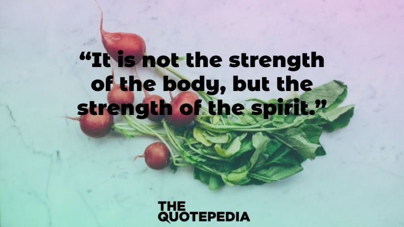 """""""It is not the strength of the body, but the strength of the spirit."""""""