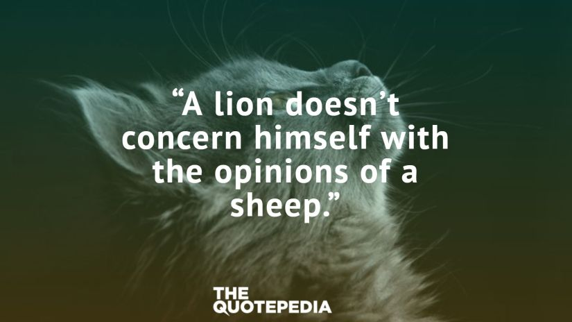 """A lion doesn't concern himself with the opinions of a sheep."""