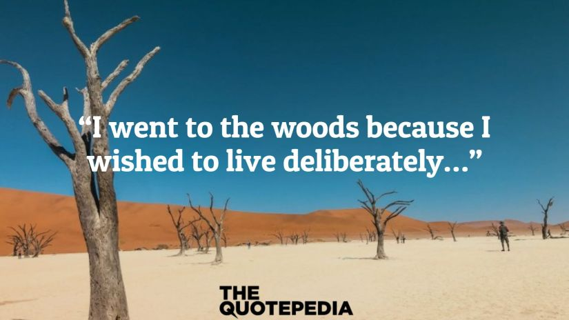 """I went to the woods because I wished to live deliberately…"""