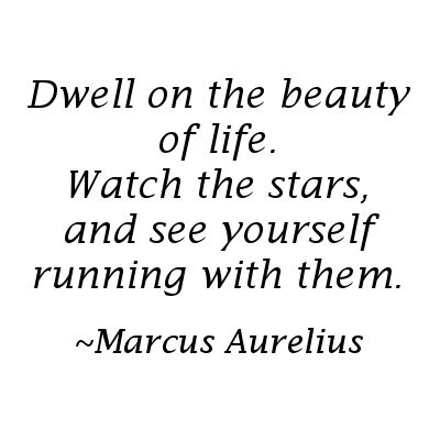 Dwell on the Beauty of  Life