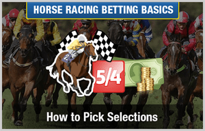 How do you pick a good horse for racing?