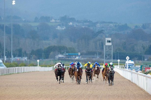 Friday 20th March: Lucky 15 Most Backed Horses