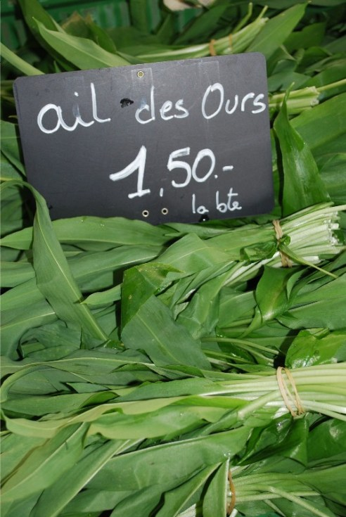 Wild Garlic Leaves or ramson, Spontaneous Cuisine, Jonell Galloway, The Rambling Epicure