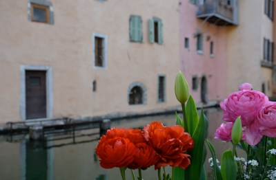 Flowers on Thiou canal in Annecy, France, photo by Jonell Galloway (R)