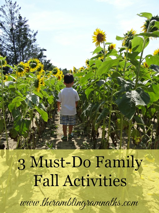 3 Must-Do Family Fall Activities