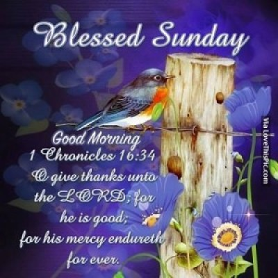 Blessed Sunday Quotes Pictures