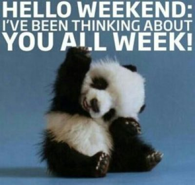 Cute Weekend Quotes
