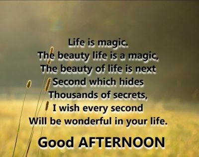 Good Afternoon Life Quotes
