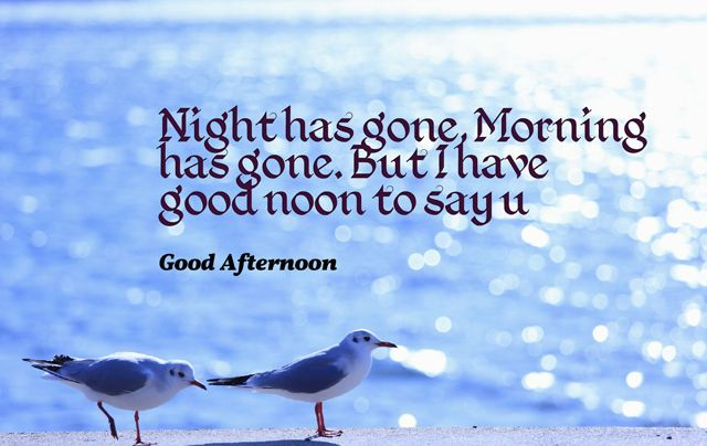 70 Good Afternoon Quotes Sayings Wishes And Images