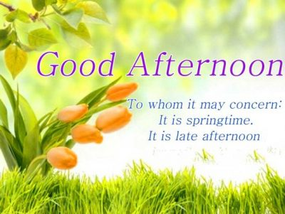 Good afternoon Quotes Facebook