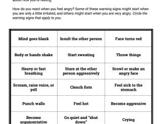 Moderating the Anger Response Through Training