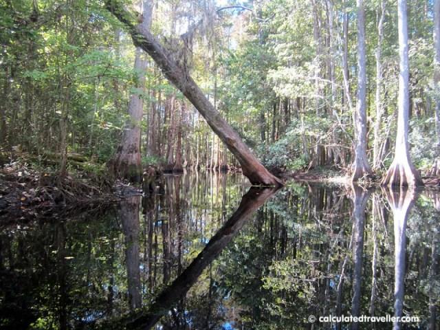 Shingle Creek at the Paddling Centre, Kissimmee, Florida