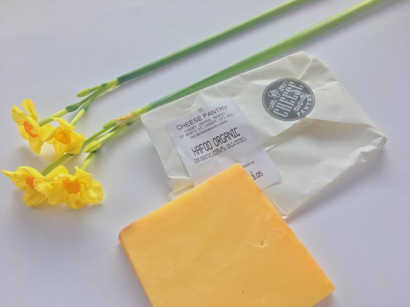 Organic Welsh Hafod cheese ideal for my St. David's Day recipe, Coquilles St. David's
